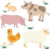 Farm animals set Stock Photos