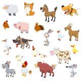 Farm Animals Set Stock Images