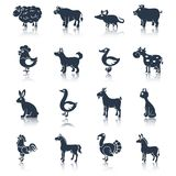 Farm animals set black. Farm animals livestock cattle and pets icons black set isolated vector illustration animals set black Stock Photography