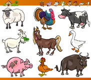 Farm animals set cartoon illustration. Cartoon Illustration Set of Happy Farm and Livestock Animals isolated on White Stock Images