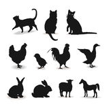 Farm animals set of contour sign  Stock Photo