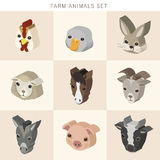 Farm animals set 3d isometric infographic Royalty Free Stock Images