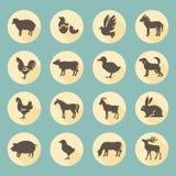 Farm animals. Set of flat design compositions with farm animals stock illustration