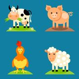 Farm animals set. In flat vector style with a chicken, pig, sheep, dairy cow Stock Image