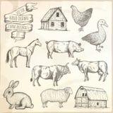Farm animals set. Royalty Free Stock Image