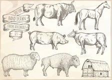 Farm animals set. Royalty Free Stock Images