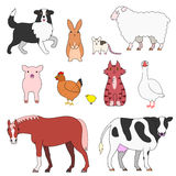 Farm animals set. Various posing farm animals set Stock Photo
