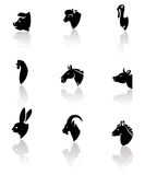Farm animals set. Vector. Farm animals and birds icon set. Vector Royalty Free Stock Photo