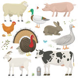 Farm animals set vector. Set of cute farm animals vector illustration. Cartoon mammal comic icon design agriculture. Colorful fauna character isolated on white Stock Images