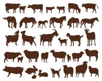 Farm animals. Set of vector icons on a white background Stock Image