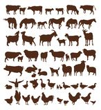 Farm animals. Set of vector icons on a white background Stock Photos