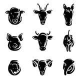 Farm animals set. Vector. Illustration royalty free illustration