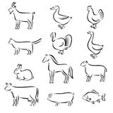 Farm animals set. Vector. Illustration Stock Images