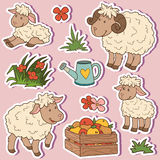 Farm animals set, vector stickers with sheep family Stock Image