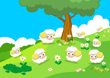 Farm animals with sheeps Royalty Free Stock Image