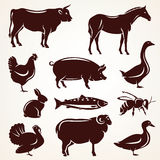 Farm animals silhouette collection Royalty Free Stock Images