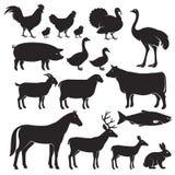 Farm animals silhouette icons. Vector illustrations Stock Photo