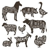 Farm Animals Silhouette Typographics. Farm animals and poultry silhouette icons set with typographics isolated vector illustration Stock Images
