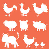 Farm animals silhouettes Stock Photography