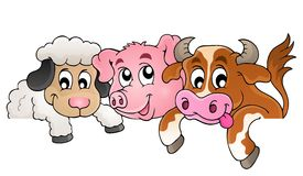 Farm animals topic image 1 Royalty Free Stock Photo