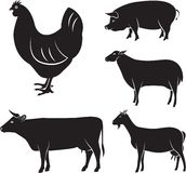 Farm animals. Vector set of farm animals chicken, cow, sheep, goat, pig Royalty Free Stock Photography