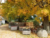 Farm in autum afternoo. royalty free stock photo