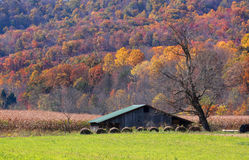 Farm in autumn Royalty Free Stock Photography