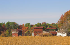 Farm in autumn countryside Stock Image