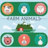 Farm Baby Animals and Birds Icons Set Royalty Free Stock Photo