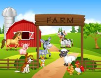 Farm background with animals Stock Image