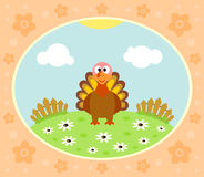 Farm background with turkey Stock Images