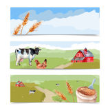 Farm Banners Set Stock Photography