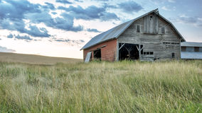 Farm barn in a field of grass Royalty Free Stock Photos