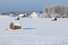 Farm with a barn and horses in winter Royalty Free Stock Images