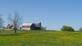 Farm, barn and silo hill of field with dandelions Stock Photo