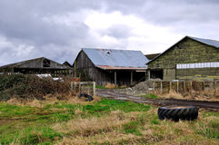 Farm barns Royalty Free Stock Images