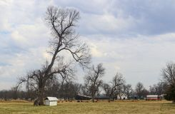 Farm with barns and equipment in early spring with trees still bare of leaves and cows in the pasture under dramatic sky stock photography