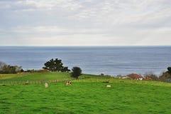 Farm in the Bay of Biscay. San Sebastian. Spain Stock Image