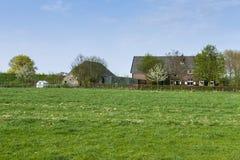 Farm at the Betuwe royalty free stock photos
