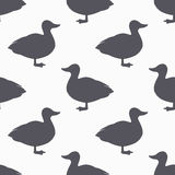 Farm bird silhouette seamless pattern. Duck meat Stock Image