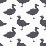Farm bird silhouette seamless pattern. Goose meat Royalty Free Stock Photos