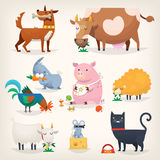 Farm birds and animals. Set of popular colorful vector farm animals and birds eating food Royalty Free Stock Image