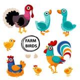 Farm birds family cartoon flat illustration. Rooster hen chicken egg, goose, turkey. Vector illustration isolated on white background stock illustration