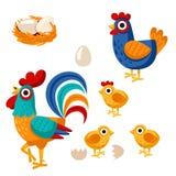 Farm birds family cartoon flat illustration. Rooster hen chicken egg. Vector illustration isolated on white background royalty free illustration