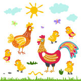 Farm birds family cartoon flat illustration. rooster hen chicken on white background. Art stock illustration