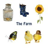 Farm birds and objects: small yellow duck chicks, nest with eggs, gumboots and sunflower isolated hand painted. Farm birds and objects and plants: small yellow royalty free illustration