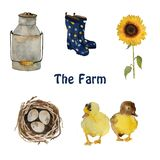 Farm birds and objects: small yellow duck chicks, nest with eggs, gumboots and sunflower isolated hand painted. Farm birds and objects and plants: small yellow vector illustration