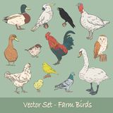 Farm Birds Vector Set Royalty Free Stock Photos