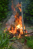 Farm bonfire burning slash with blurred flame and smoke. Tree cutting on a farm means cleaning up the slash with a carefully watched fire. Vertical Stock Photo