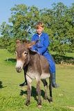 Farm Boy with his donkey Stock Photography